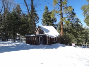 Cabin for sale now $129,000!