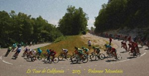 Amgen Tour Bike Race 2013 art by Francisco Valdovinos
