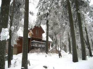 Palomar Mountain Home For Sale Bonnie Phelps