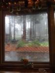 rain on palomar mountain