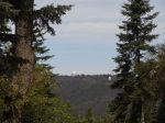 lots and land for sale palomar mountain bonnie phelps realtor