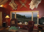 upper meadow lodge for sale palomar mountain bonnie phelps