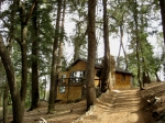 beauty in the woods cabin for sale palomar mountain bonnie phelps