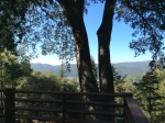 twin oak cabin for sale palomar mountain