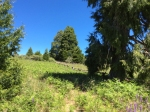 land for sale palomar mountain upper meadow
