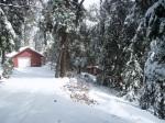 Amble Inn Cabin For Sale, Palomar Mountain, Palomar Properties