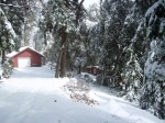 Cabin For Sale Palomar Mountain