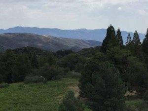 Palomar Mountain Bonnie Phelps Marie Waldron tour