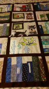 barbara anne waite author, quilt