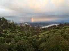 kellen's rainbow
