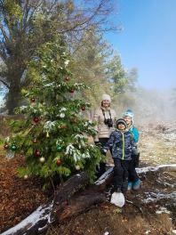 triple j christmas tree