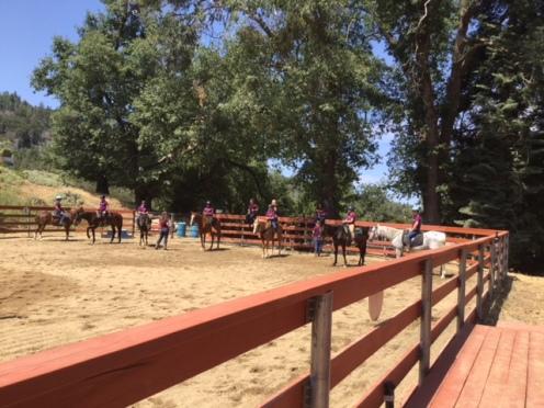 horse camp 2017