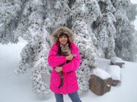 april snow 2011